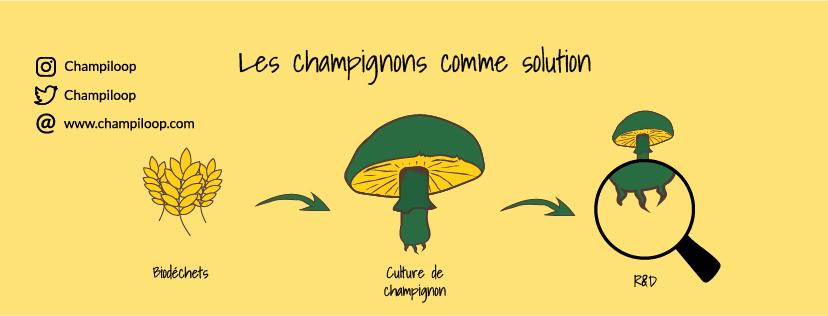 Incubation Grenoble 2021 : sept projets solidaires et écologiques en incubation